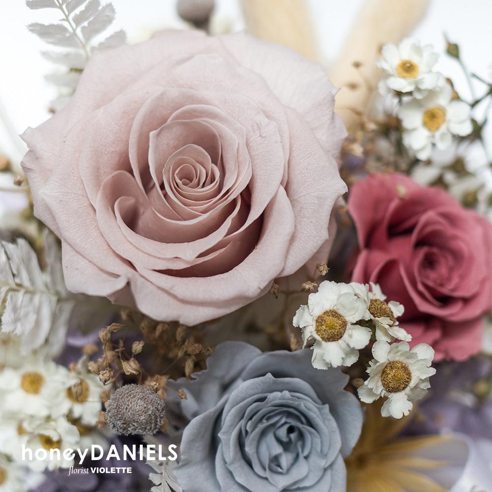 玫瑰恆星花-莫蘭迪